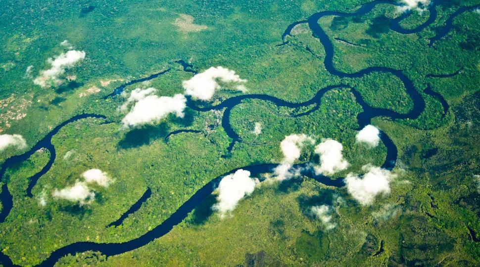 Amazonassynode